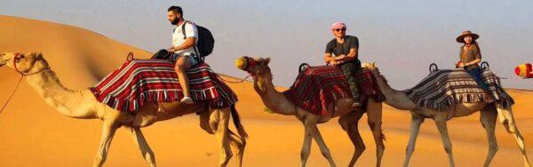 Desert Safari Dinner Only - 2