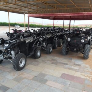 Desert Safari With Quad Biking - 8