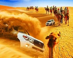 Dubai morning desert safari with sandboarding & camel ride