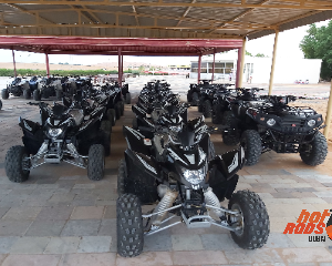 Morning Safari With Quad Bike - 1