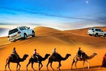 Desert Safari Dubai, Home